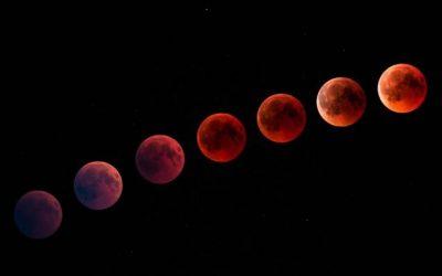 Il sogno delle 7 lune nuove